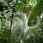 Effizient gegen den Berechtigungsdschungel
