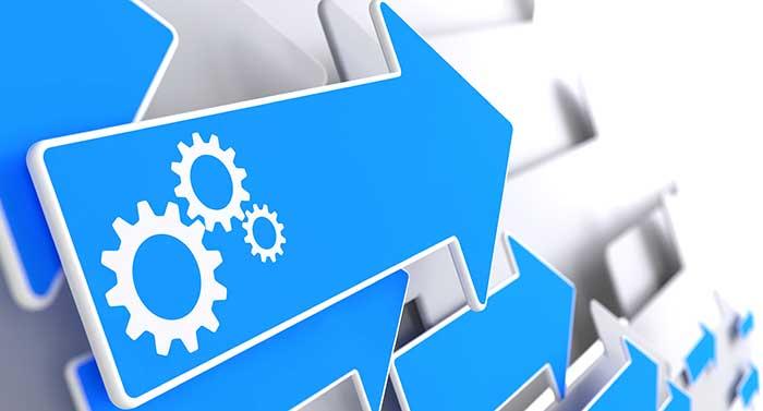 Prozessmanagement und ERP-Einführung