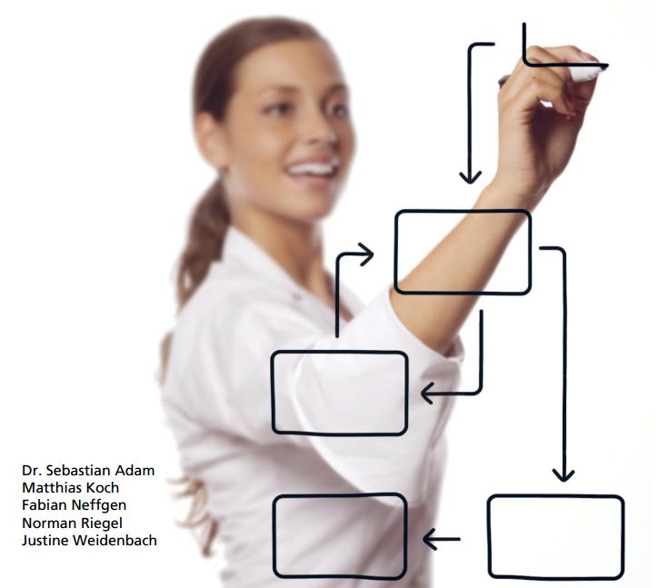 marktanalyse BPM Suites Fraunhofer IESE