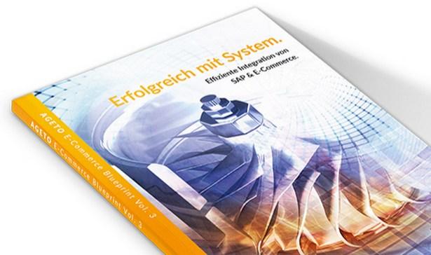 screenshot ageto blueprint sap und e-commerce