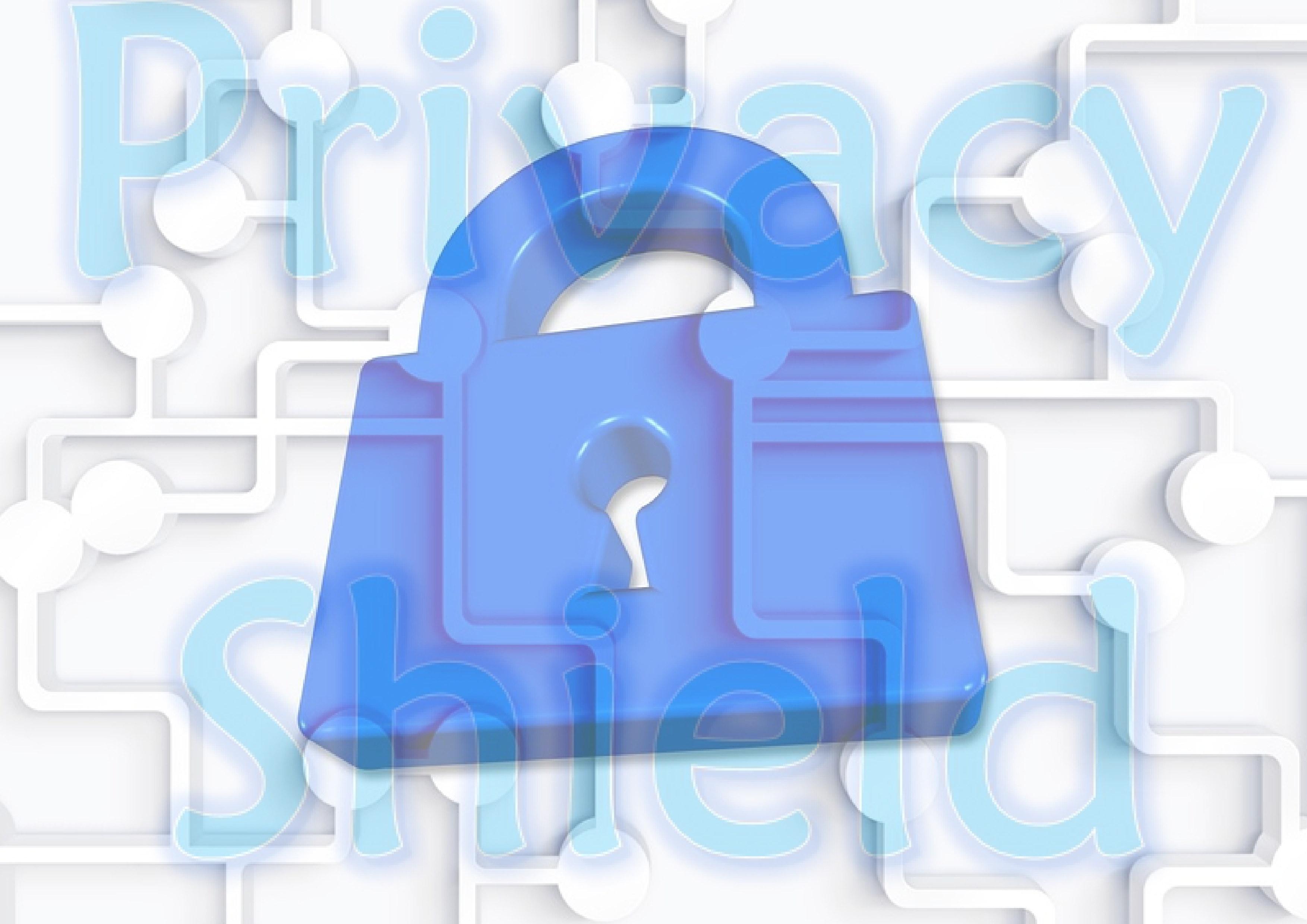 illu (c) aa privacy shield