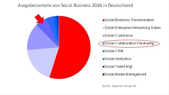 grafik experton social business ausgaben