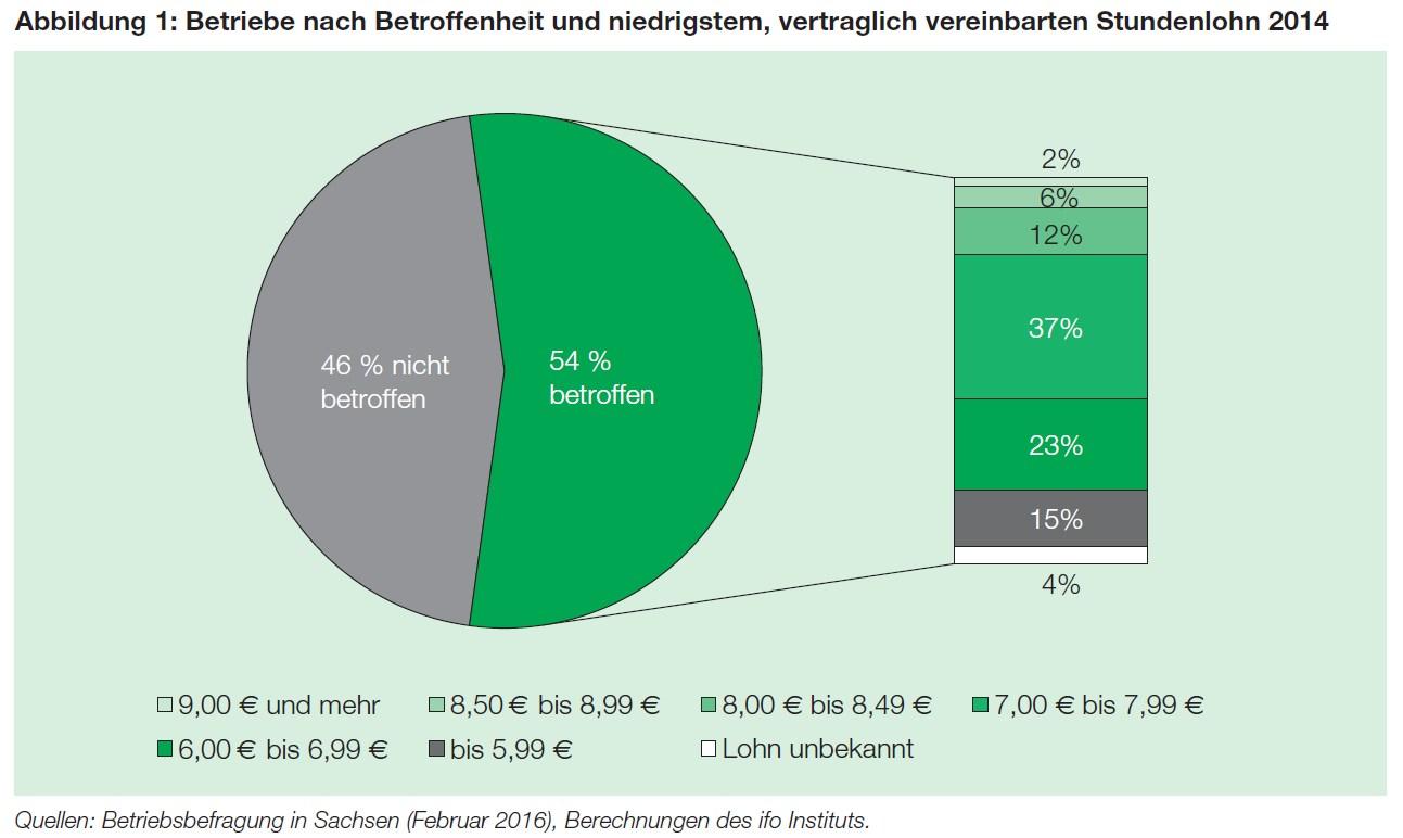 grafik ifo dresden mindestlohn betroffenheit