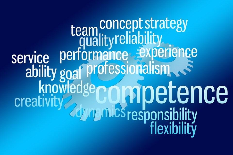 foto cc0 pixabay geralt kompetenz management
