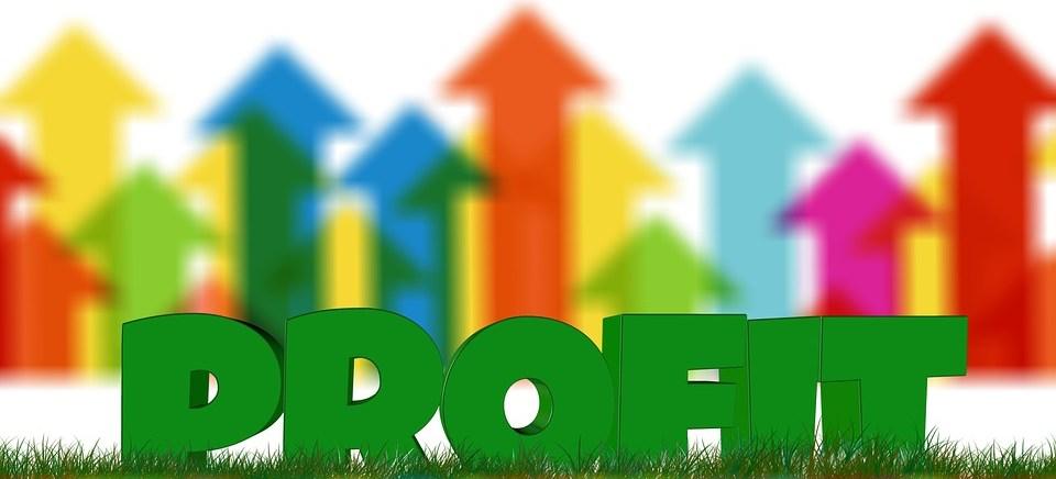 foto cc0 pixabay geralt profit startup