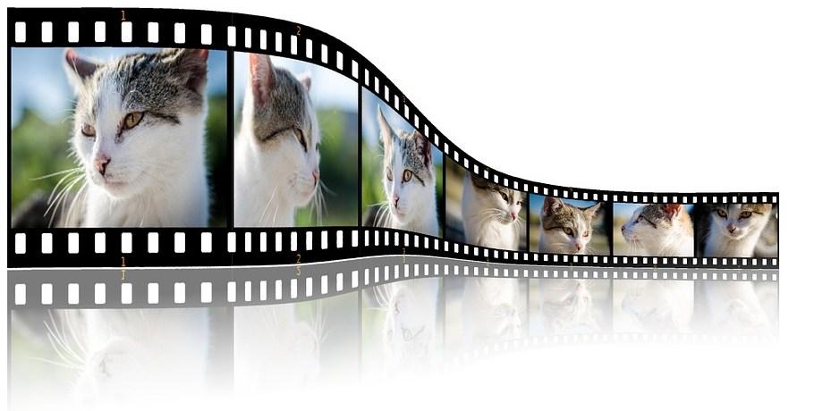 foto-cc0-pixabay-jarmoluk-video-streaming