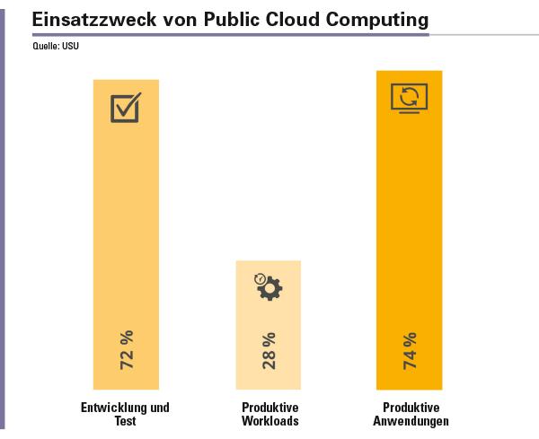 Abbildung 2: Für den Einsatz der Public Cloud Computing Services haben sich in den Unternehmen zwei Schwerpunkte heraus kristallisiert.